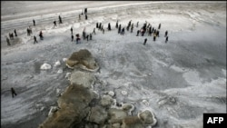 Urmiyə gölünün son görüntüləri