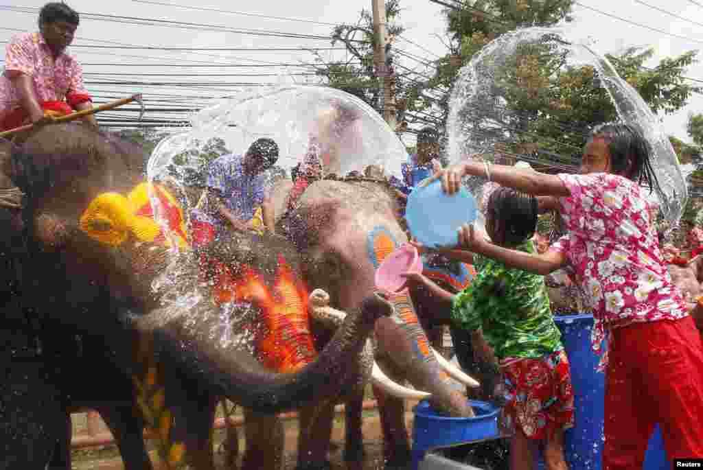 اس تہوار میں ایک دوسرے پر پانی پھینکنا اور اکثر اوقات اس کے لیے ہاتھیوں کا استعمال بھی کیا جاتا ہے۔