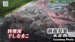 NHK报道中国主办东北亚博览会上,朝鲜摊位贩卖违禁海参干的录像在日本YouTube上热播