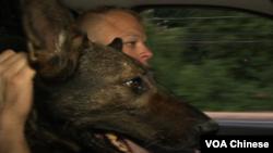 迪克森警士和Rocko在警车上(VOA卫视张松林拍摄)