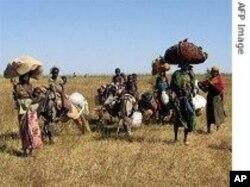 Des réfugiés dans l'Est du Tchad