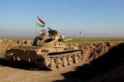 """Kurd jangchilari """"Islomiy davlat""""ga qarshi kurashmoqda, Behzod Muhammadiy"""