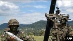 ქართულ -ამერიკული სამხედრო წვრთნები