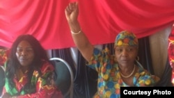 Defence Minister Oppah Muchinguri-Kashiri chanting the Zanu PF slogan in Mutare ...