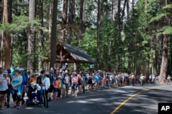 Tourists line a road as the President Barack Obama family takes a hike nearby at Yosemite National Park, Calif., on Sunday, June 19, 2016.