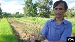Dr.Yang Saing Koma is the President of Cedac.
