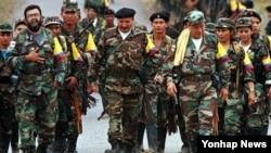 콜롬비아 혁명무장반군(자료사진)