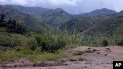 The fertile lands of Masisi in eastern DRC (file photo)