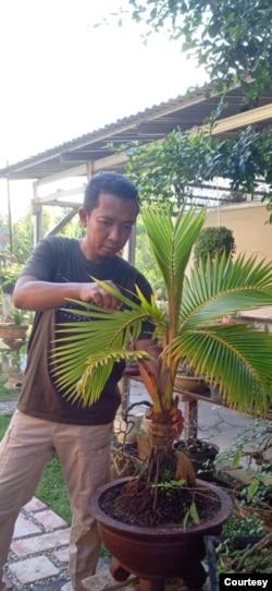 Aris Setiawan, Grup barter tanamannya berambisi hijaukan bumi. (Foto: Aris Setiawan)
