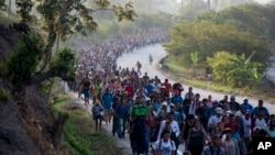Amnistía Internacional criticó en su informe este 27 de noviembre de 2019 el trato que da México a los migrantes.