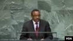 Hailemariam D.