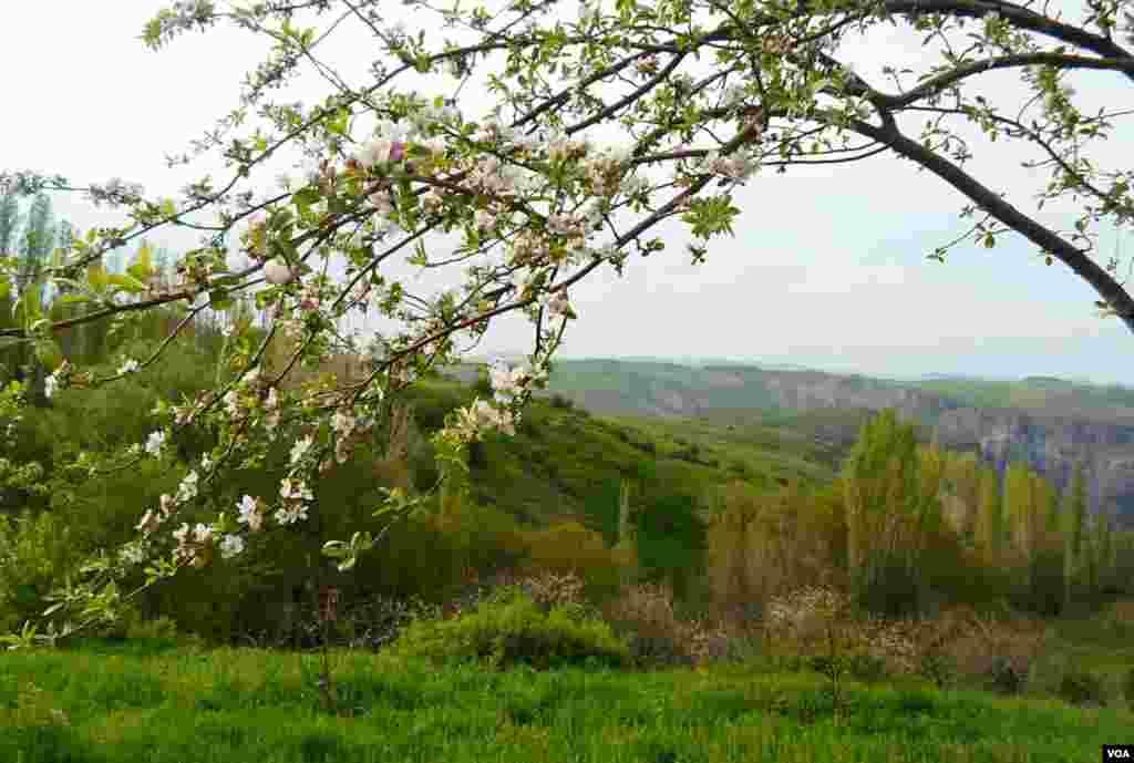 منطقه حفاظت شده زنده بولاغ در روستای شیخلر - آذربایجان شرقی عکس: طاهره رضایی (ارسالی از شما)