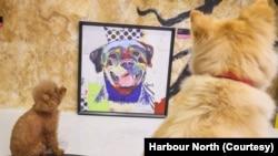 Dog Art Gallery karya Michael Keck di Harbour North, Hong Kong. (Foto: Harbour North)