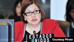 La Embajadora de Estados Unidos ante la OEA, Carmen Lomellin conversó con la Voz de América