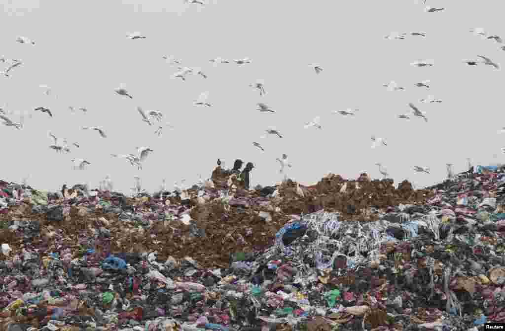 Men collect recyclable items in Ouled Fayet's municipal garbage dump, west of Algiers, Algeria.