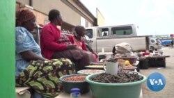 Dry Spell Kills Botswana's 'Edible Diamonds', Hitting Rural Communities