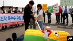 South Korean civic group members perform during rally against imported genetically modified organism (GMO) corn from China.