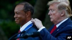 """Presiden Donald Trump menganugerahkan tanda jasa """"Presidential Medal of Freedom"""" kepada pegolf Tiger Woods, di Taman Bunga Mawar, Gedung Putih, Washington D.C., 6 Mei 2019."""