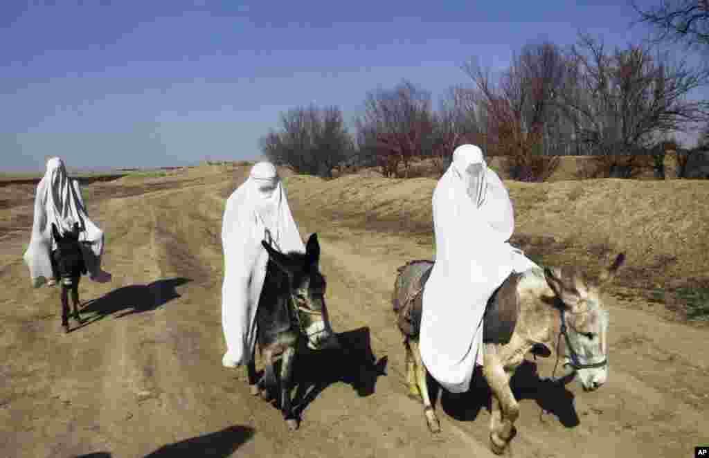 زنان افغان در ولسوالی شولگرۀ ولایت بلخ
