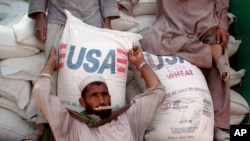 FILE - An Afghan refugee collects a bag of wheat being distributed by the World Food Program and USAID at Jalozai refugee camp near Peshawar, Pakistan.