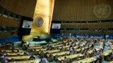 14일 미국 뉴욕 유엔본부에서 회원국 대표들이 인권이사회(HRC) 신규 이사국을 선출하고 있다.