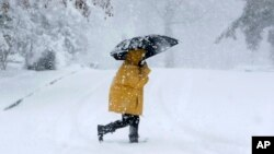 Cuarenta y ocho millones de personas desde Maryland hasta Maine tuvieron que soportar fuertes nevadas, y hasta truenos el miércoles 7 de marzo.