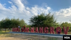 """Save Our Mangrove"" di hutan mangrove Pantai Karangsong, Indramayu, Jawa Barat. (Courtesy : Eva Mazrieva/VOA)"