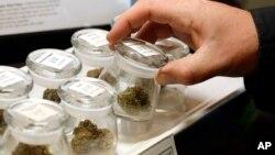 Različite sorte marihuane izložene za prodaju u Warmland centru, dispanzeru za medicinsku marihuanu u Mill Bayu, Britanska Kolumbija na ostrvu Vancouver u Kanadi, 24. septembra 2018.