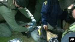 In this April 19, 2013 photo, ATF and FBI agents check suspect Dzhokhar Tsarnaev after he was apprehended in Watertown, Mass.
