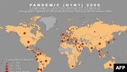 Карта распространения вируса H1N1