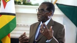 Ndimyake Mwakalyelye Reports on President Mugabe's ZBC Interview