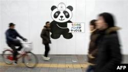 """Một bức tường sơn gấu trúc với dòng chữ """"gấu trúc đang đến Ueno"""" tại Tokyo, Thứ Sáu 18/2/2011"""