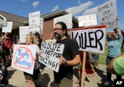 Protestors gather outside Dr. Walter James Palmer's dental office in Bloomington, Minn., Wednesday, July 29, 2015.