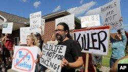 Warga berdemonstrasi di depan tempat praktik dokter gigi Walter Palmer di Bloomington, Minnesota (29/7), memprotes pembunuhan singa Cecil di Zimbabwe oleh Palmer. (AP/Ann Heisenfelt)