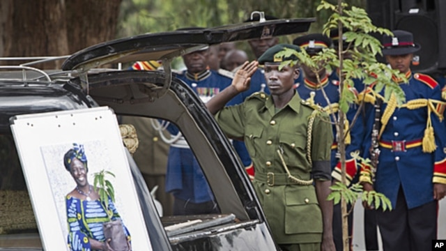 A member of the Kenya Forest Service salutes the late Wangari Maathai next to the hearse carrying her coffin, at her state funeral held at Freedom Corner in Uhuru Park, Nairobi, Kenya, October 8, 2011.