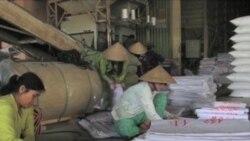 Vietnam Rice Buoyed by Thai Policy, China Demand