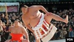 Pesumo di Jepang (foto: dok). Asosiasi Sumo Jepang menunda turnamen musim semi mereka, karena skandal pengaturan hasil pertandingan.