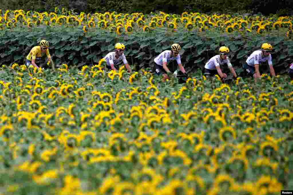 Team Sky rider Chris Froome of Britain, wearing the overall leader's yellow jersey, and other Team Sky riders cycle past during the 178-km Stage 10 of the 104th Tour de France cycling race, from Perigueux to Bergerac, France.