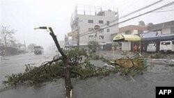 Số người chết vì lũ lụt tại Thái Lan, Campuchia tăng