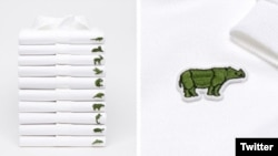 Lacoste replaces crocodile logo with these 10 endangered species