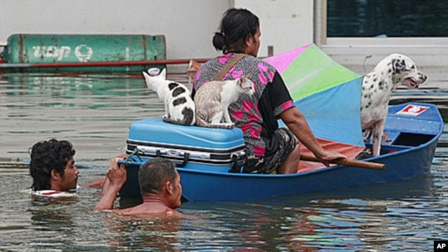 A woman and her pets are transported on a boat as she evacuates from flooding in Ayutthaya province, central Thailand, Sunday, October 9, 2011.