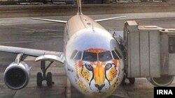 هواپیمایی با تصویر یوز ایرانی