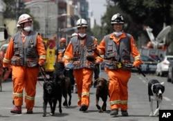 Un equipo de perros canadienses expertos en descubrir personas vivas entre escombros, llegaron a Ciudad de México este lunes con sus entrenadores para ayudar en las labores de rescate en edificios que colapsaron en el sismo del pasado 19 de septiembre en México. Sept. 25, 2017.