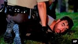 پولیس از توقیف ٣١ نفر در شب گذشته خبر می دهد