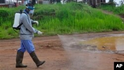 Ebola health workers spray disinfectant on a road near the home of a 17-year old boy that died from the Ebola virus on the outskirts of Monrovia, Liberia, Wednesday, July 1, 2015.