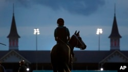 A horse heads onto the track for a morning workout at Churchill Downs Friday, May 4, 2018, in Louisville, Ky. The 144th running of the Kentucky Derby is scheduled for Saturday. (AP Photo/Charlie Riedel)