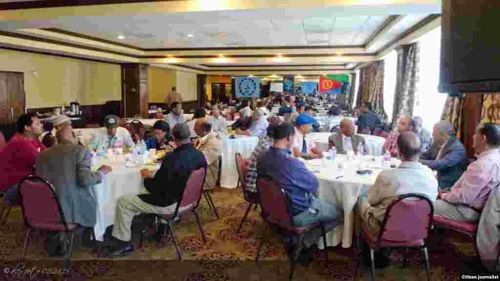 24th Anniversary of Eritrean Independence Observed by Democratic Change-Seeking Diaspora Community
