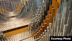 The Longwood Organ is among the world's great concert organs, with 146 ranks and 10,010 pipes.