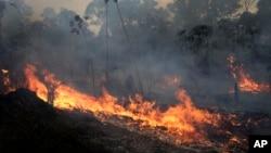 A fire burns along the road to Jacunda National Forest, near the city of Porto Velho in the Vila Nova Samuel region which is part of Brazil's Amazon, Monday, Aug. 26, 2019. (AP Photo/Eraldo Peres)