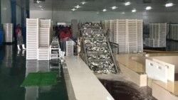 Peixe confiscado começa a ser distribuído -2:18